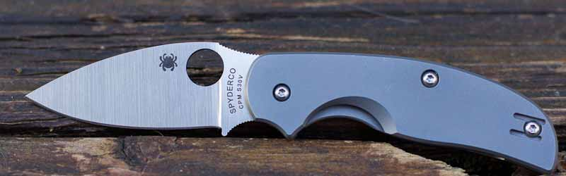 Spyderco Sage 2 Review